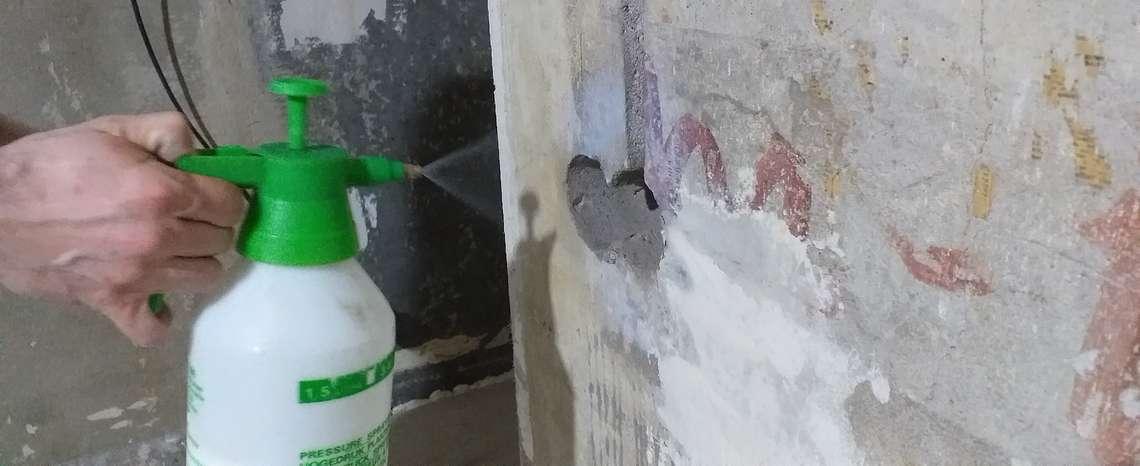 Грунтование стен и потолка садовым распылителем