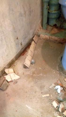 Бетонный плинтус в туалете 137 серии