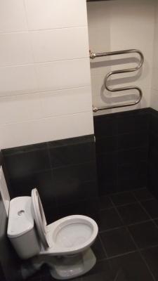 фото ремонта туалета в Горелово